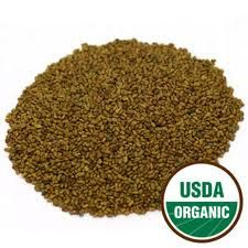 ALFALFA SEEDS SPROUTING ORG