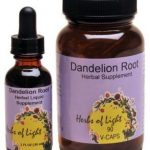 DANDELION ROOT EXT